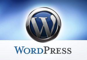 fix WordPress error, customize wordpress theme