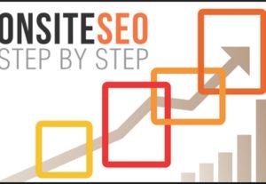 WordPress SEO OnSite Professional