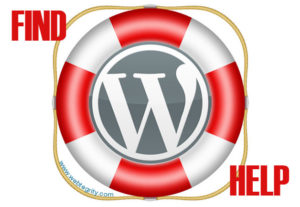 Provide any wordpress support