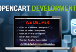 Opencart installation on your server