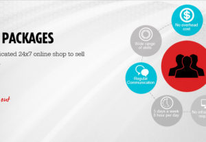 WordPress website with FREE SEO Package