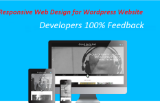 Responsive WordPress website with search engine optimised