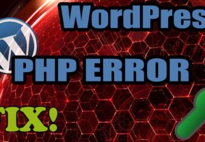 Fix WordPress bug / error