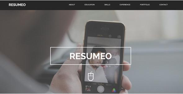 ResumeoOnePage