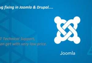 Fix any type of joomla and drupal issues