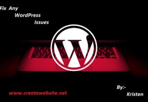 Help you with any WordPress issues problems