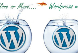 Backup, Clone, Copy or Move a WordPress Site from one location to anothe