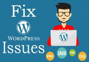 Any CSS Html Or Php Edit For WordPress