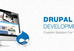 Develop Professional Drupal Website