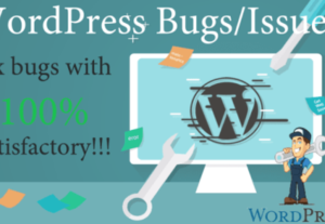 Debug Your WordPress And Woocommerce Bugs