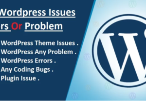 Help you to Fix WordPress Errors or Issue