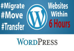 Fix WordPress Issues Within 6 Hours