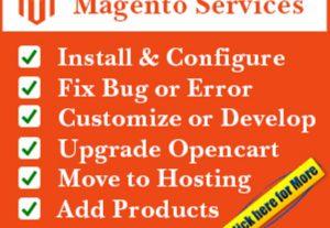 Fix Magento Bug And Customize Magento Store