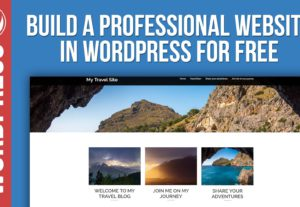 Build Professional WordPress Website Or Blog
