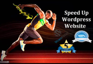 Speed Up Your WordPress Site With Google Pagespeed