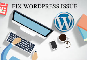 Fix WordPress Issues, WordPress Errors Problems